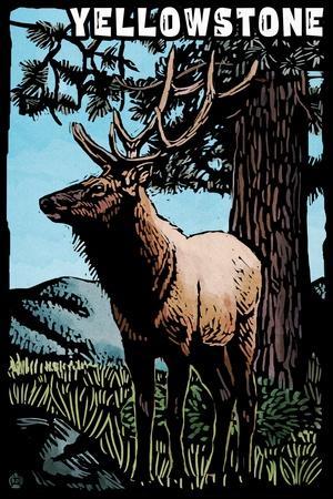 https://imgc.allpostersimages.com/img/posters/yellowstone-national-park-elk-scratchboard_u-L-Q1GQO740.jpg?p=0