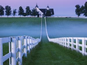 Horse Farm Lexington by Yiming Hu