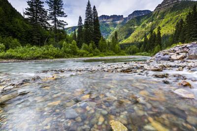 Stream, Rocks, Rushing Water, Glacier National Park, Montana by Yitzi Kessock