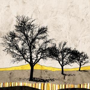 Earthtones by Ynon Mabat