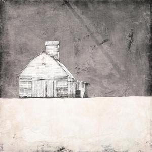 Farmhouse under Grey Skies by Ynon Mabat