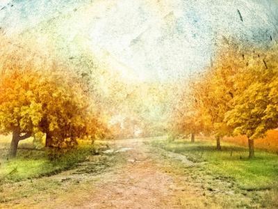 Oak Path by Ynon Mabat