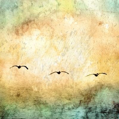 Seagulls in the Sky Square III by Ynon Mabat