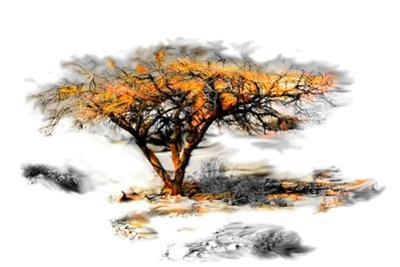 Trees Alive II by Ynon Mabat
