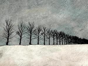 Winter Row by Ynon Mabat