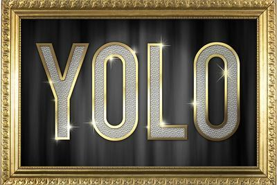 https://imgc.allpostersimages.com/img/posters/yolo-bling-faux-frame_u-L-PYAXSW0.jpg?artPerspective=n
