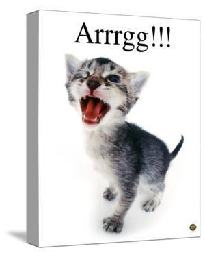 Arrrgg! by Yoneo Morita