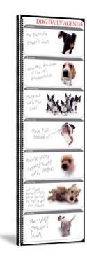 Dog Agenda by Yoneo Morita