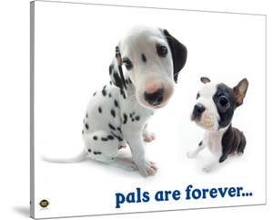 Pals Are Forever by Yoneo Morita