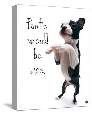Pants Would Be Nice by Yoneo Morita