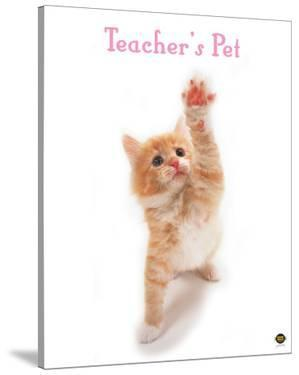 Teacher's Pet by Yoneo Morita