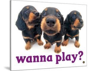 Wanna Play? by Yoneo Morita