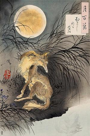 Moon on Musashi Plain, One Hundred Aspects of the Moon