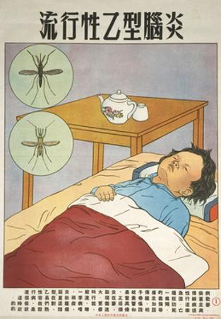 Young Patient with Mosquitoes
