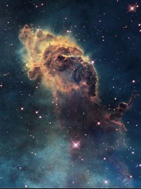 Young Stars Flare in the Carina Nebula