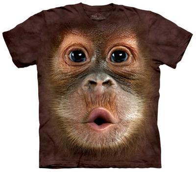 Youth: Big Face Baby Orangutan