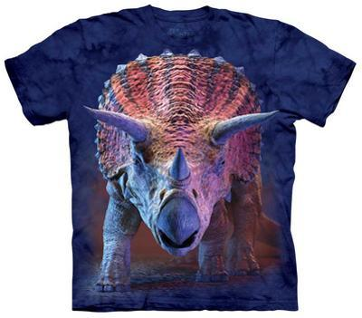 Youth: Charging Triceratops