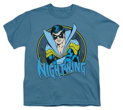 Youth: DC Comics - Nightwing