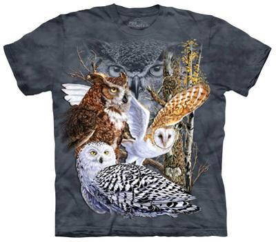 Youth: Find 11 Owls