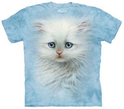 Youth: Fluffy White Kitten