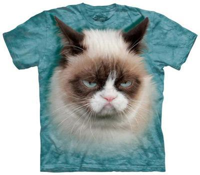 Youth: Grumpy Cat