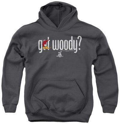 Youth Hoodie: Woody Woodpecker - Got Woody