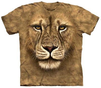 Youth: Lion Warrior