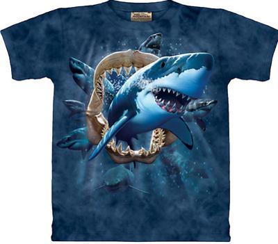 Youth: Shark Attack