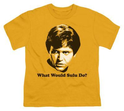 Youth: Star Trek-What Would Sulu Do