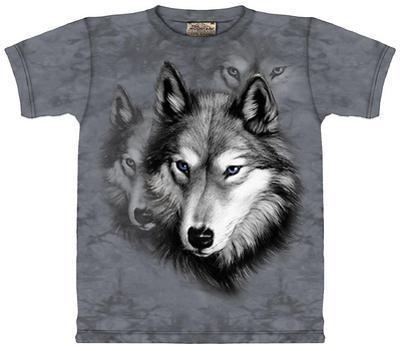 Youth: Wolf Portrait