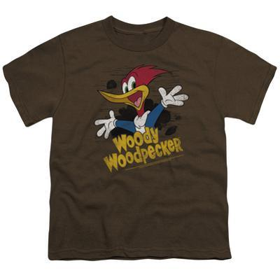 Youth: Woody Woodpecker- Excited Entrance