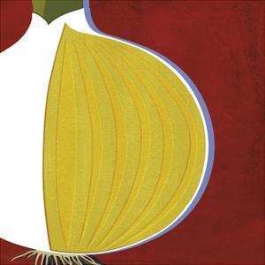 Onion by Yuko Lau