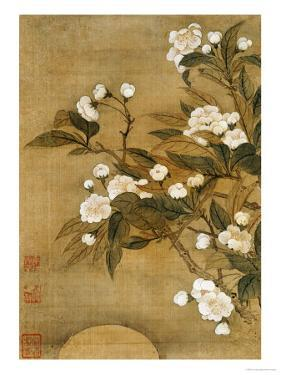 Pear Blossom and Moon by Yun Shouping