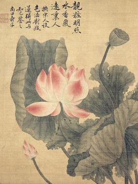 Peonies by Yun Shouping