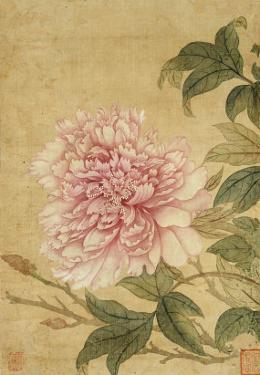 Peony by Yun Shouping