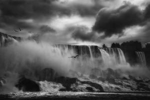 Powerful Splendor by Yvette Depaepe