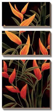 Sunburst Blossoms by Yvette St^ Amant