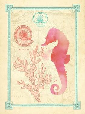 Pretty Ocean 2 by Z Studio