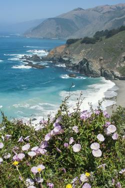 Along the Big Sur Coastline, California by Zandria Muench Beraldo