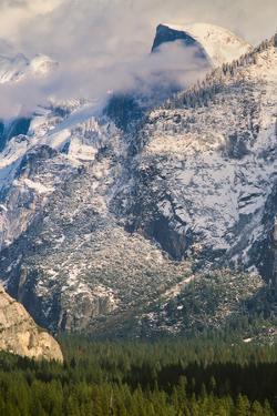 Half Dome and Valley, Yosemite National Park, California by Zandria Muench Beraldo