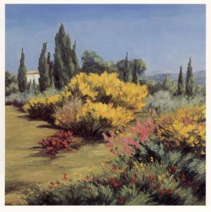 Provencal Landscape by Zarou