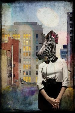 Zebra Strolling the High Line