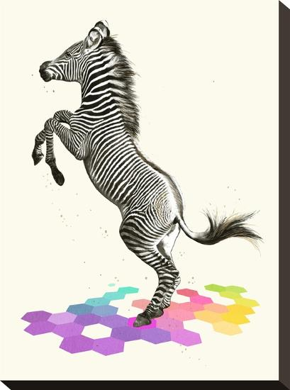 Zebra-Laura Graves-Stretched Canvas