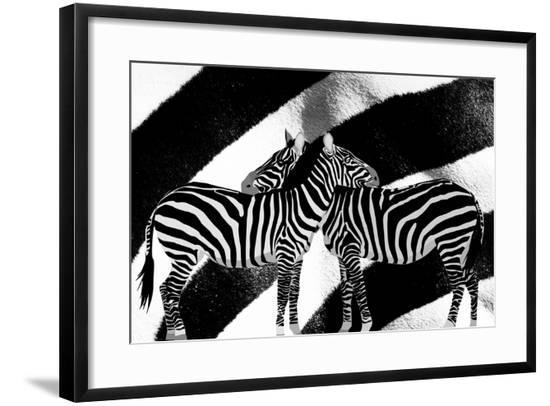 Zebra-Ata Alishahi-Framed Giclee Print