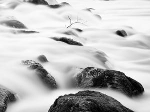 Zen Nature. Water Flow, Brunch and Stones.