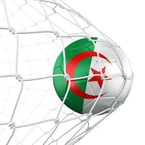 Algerian Soccer Ball in a Net by zentilia