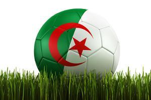 Algerian Soccerball Lying in Grass by zentilia