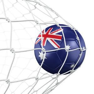 Australian Soccer Ball in a Net by zentilia