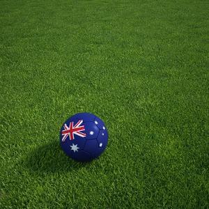 Australian Soccerball Lying on Grass by zentilia