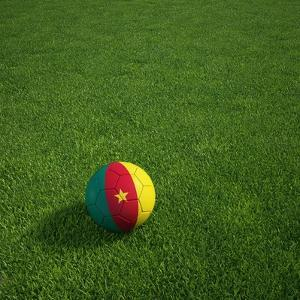 Cameroonian Soccerball Lying on Grass by zentilia